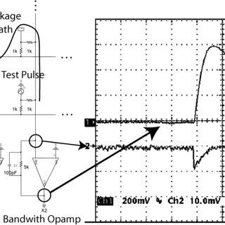 (PDF) Compact readout electronics for position sensitive