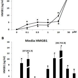 Ethanol exposure decreases neuronal HDACs activity causing