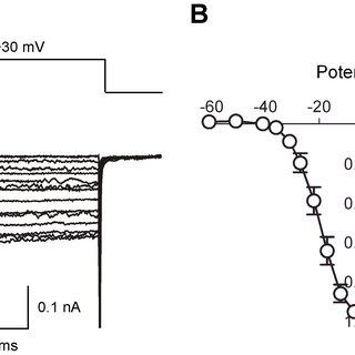 Fish Scale Diagram Fish Scale Microscopy Wiring Diagram