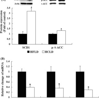 (PDF) Isocaloric Pair-Fed High-Carbohydrate Diet Induced