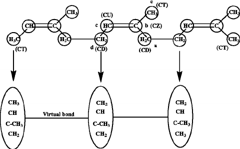 Scheme describing the structure of polyisoprene with atom
