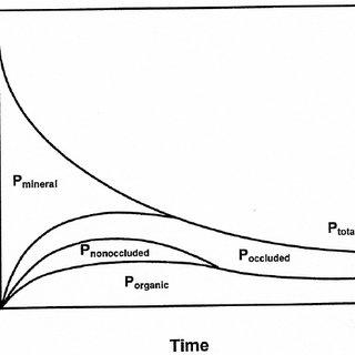 (PDF) The Global Phosphorus Cycle