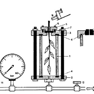 Schematic drawing of a pressure chamber apparatus. 1