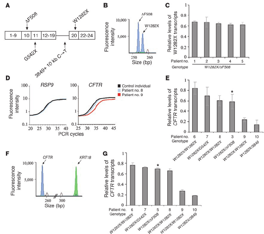 Levels of CFTR nonsense transcripts in nasal epithelium of