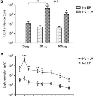 Role of IL-6 on keratinocyte migration and wound healing