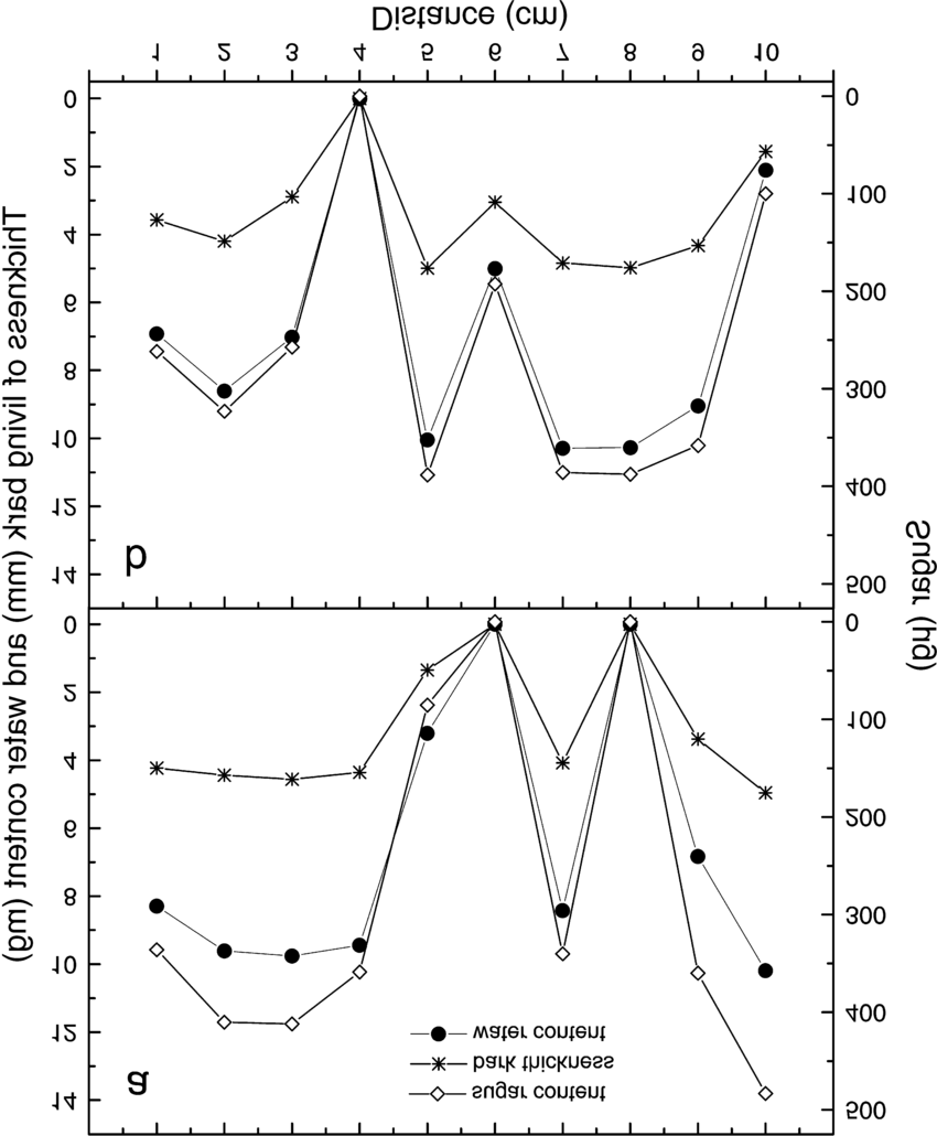 medium resolution of relationships between phloem water content phloem total sugar concentration and phloem thickness over 0 1 m