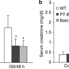 (PDF) Bax and Bak have critical roles in ischemic acute