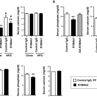 (A) Serum phosphate and calcium levels in male C57BL/6