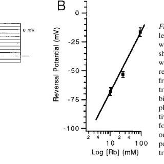 (PDF) Molecular cloning of a glibenclamide-sensitive