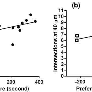 (PDF) Acquisition of morphine conditioned place preference