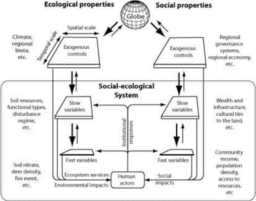 3. Diagram of a social-ecological system (the rectangle