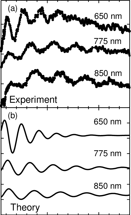 Experimental (a) and theoretical (b) coherent phonon