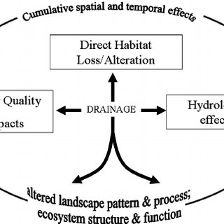 (PDF) Effects of Agricultural Drainage on Aquatic