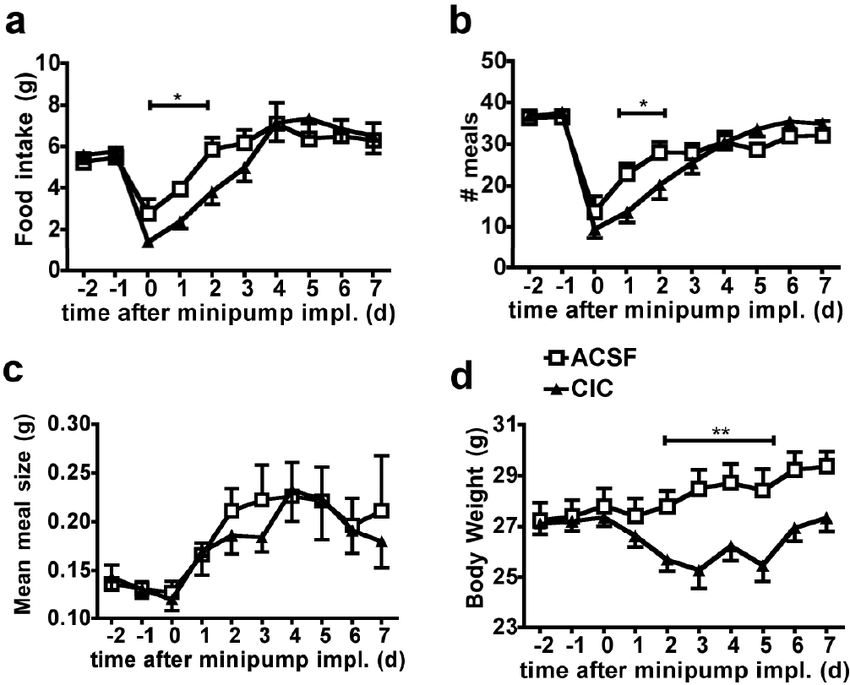 MBH CIC decreases food intake and body weight in mouse