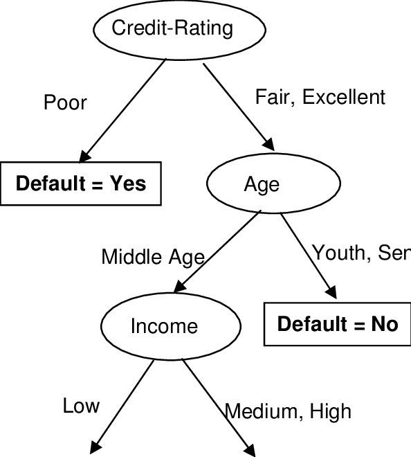 Decision Tree Model Induced from the Automobile Loan Data