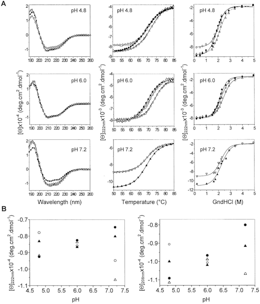 Secondary structure and denaturation of PrPs. (A) First