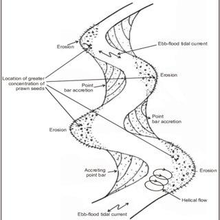 (PDF) Man-Made Environmental Degradation at Sunderbans