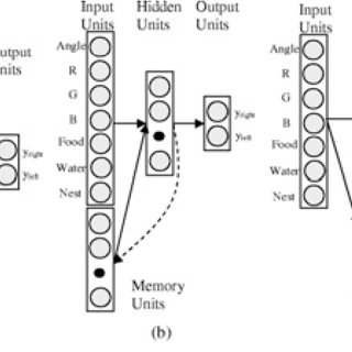 (PDF) Evolution of Neural Architecture Fitting