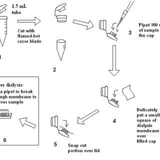 12 Proposed mechanism of the E. coli Class II FBP aldolase