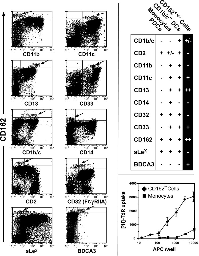 Phenotypic characterization of CD162 bright peripheral