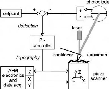 Schematic diagram of a standard PI-controlled AFM with