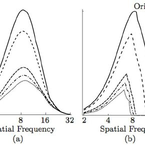 Separability of spatial frequency and orientation. (a