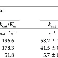 (PDF) Characterization of the Human LPIN1-encoded