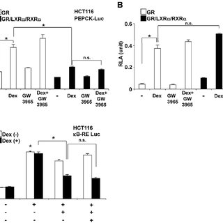 LXR a /RXR a attenuates the association of GR to GREs in