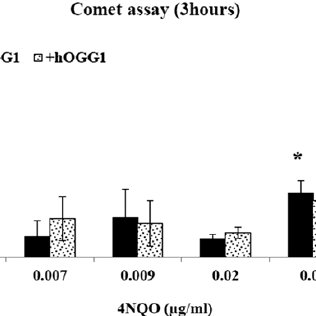 The in vitro comet assay. The effect of hOGG1 on DNA tail