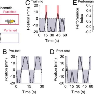 (PDF) 5-HT is necessary for place memory in Drosophila