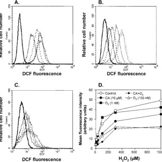 (PDF) Carnosic acid potentiates the antioxidant and