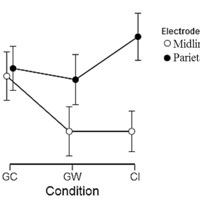 (a) The block diagram EEG recording set-up. (b) The 64