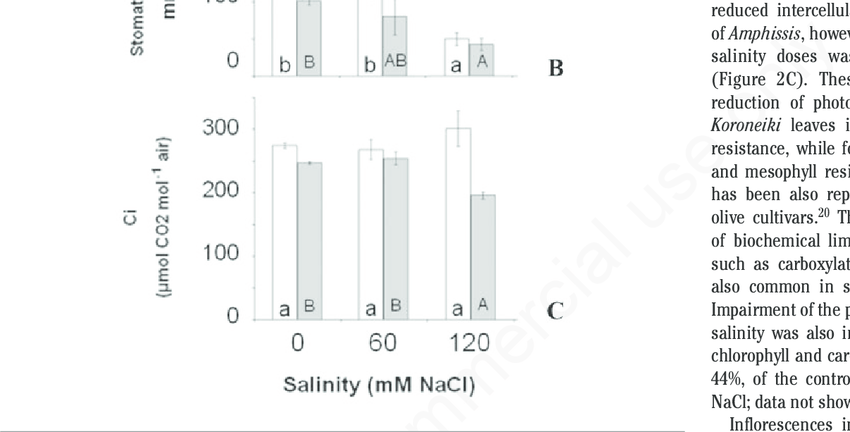 Influence of NaCl salinity (60 mM and 120 mM) on (A