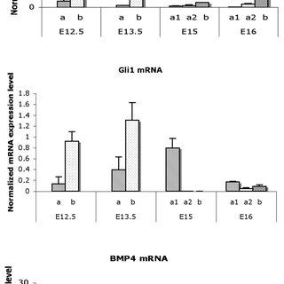 Northern blot analysis reveals that inhibition of PI(3