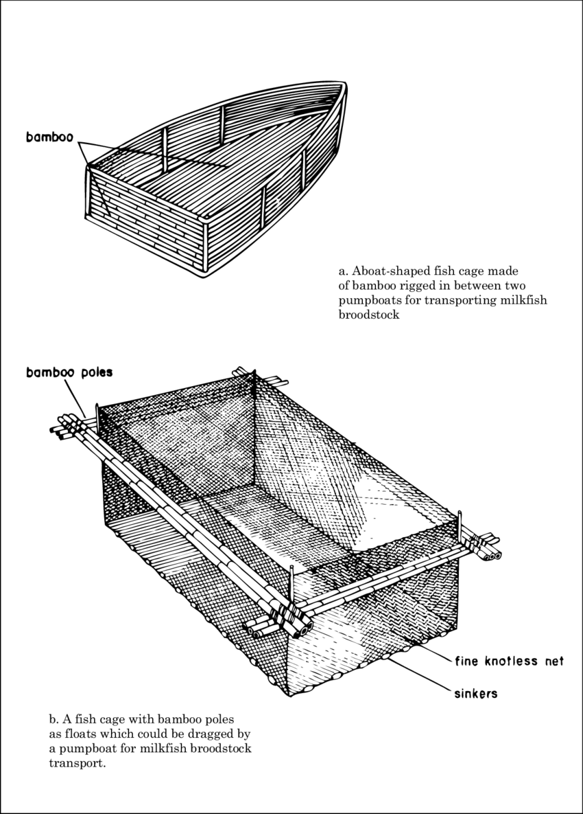 hight resolution of bamboo and net barge for fish transport