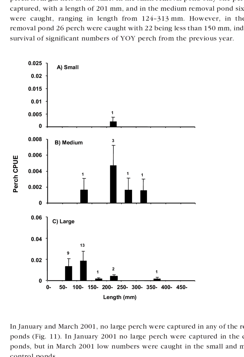medium resolution of cpue no fish hr 1 net 1 of 50 mm length classes of perch caught download scientific diagram