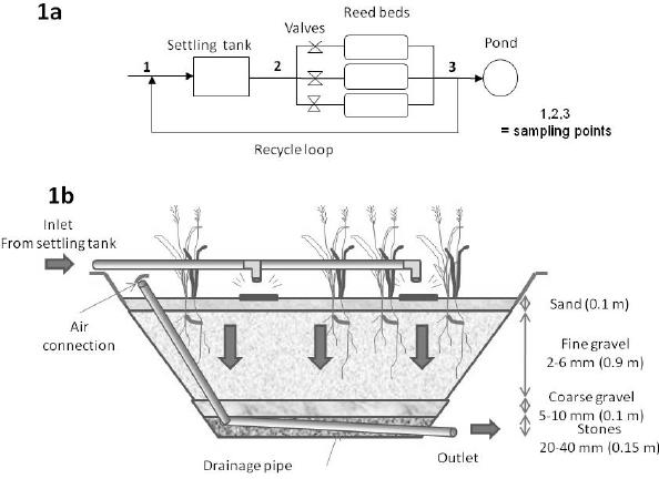 surface runoff diagram