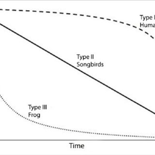 (PDF) Does life history affect molecular evolutionary rates?