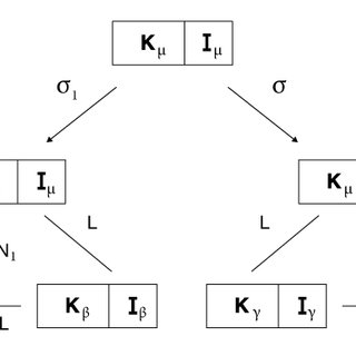 The different elements of the structuralist approach