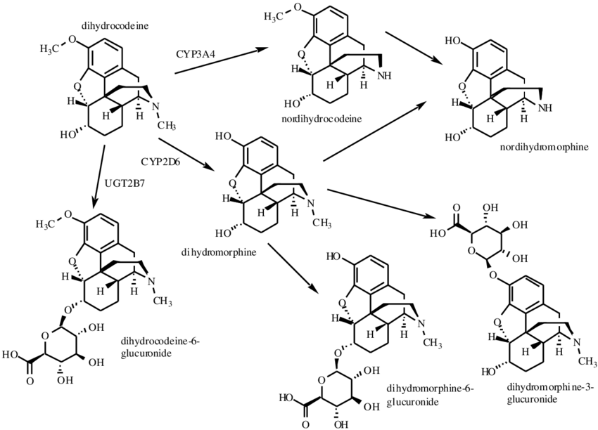 Chemical structures and metabolic pathways of