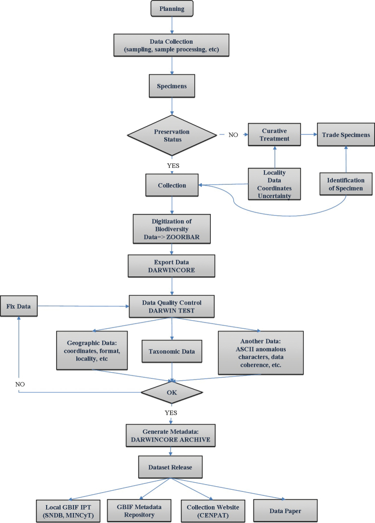 medium resolution of flow chart describing the methods procedure collection digitalization and data publishing