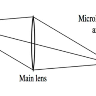 Schematic diagram of a lightfield camera , with a