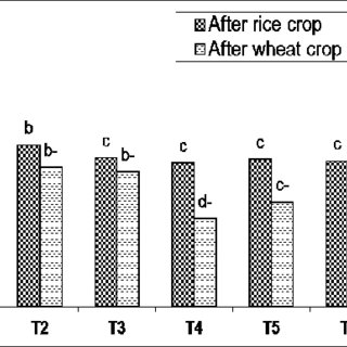 (PDF) Effect of Compost and Gypsum Application on the