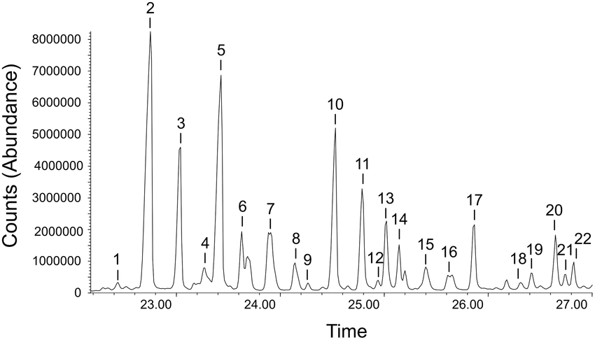 Example of a Gas chromatography-Mass spectrography (GS-MS