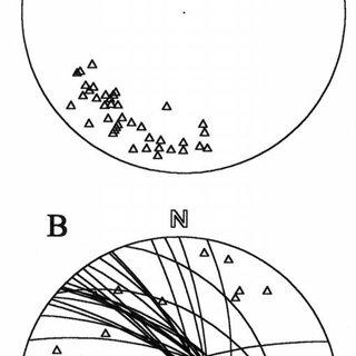 -Schmidt stereonet (lower hemisphere) of the striae on