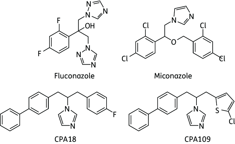 Chemical structures of fluconazole miconazole CPA18 and ...