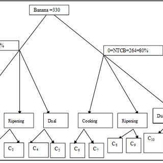 Three Tiered Choice (tree) structure of TC decision making