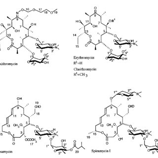(PDF) Conformational analysis of josamycin, a 16-membered