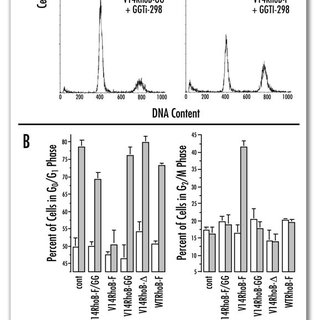 Regulation of the Rho/ROCK/LIMK/cofilin pathway by p21