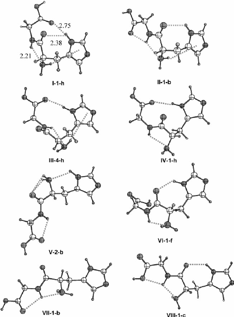 Structure of the lowest energy conformer for each of the